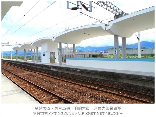 金剛大道59.JPG