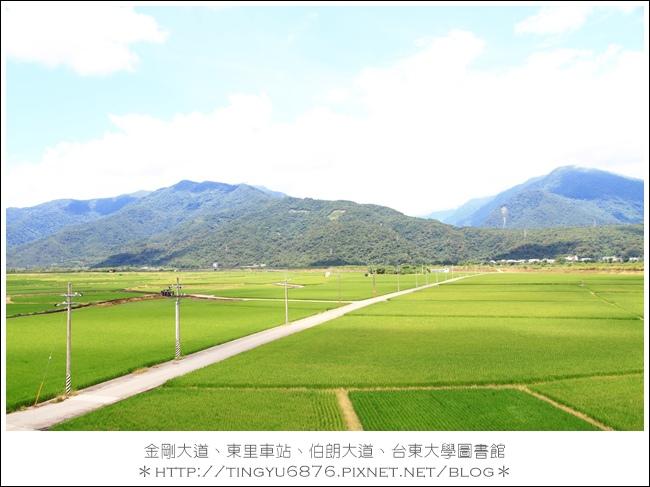 金剛大道63.JPG