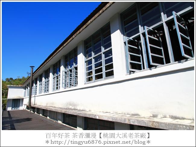 大溪老茶廠64.JPG