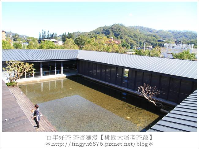 大溪老茶廠65.JPG