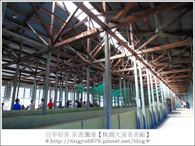 大溪老茶廠74.JPG