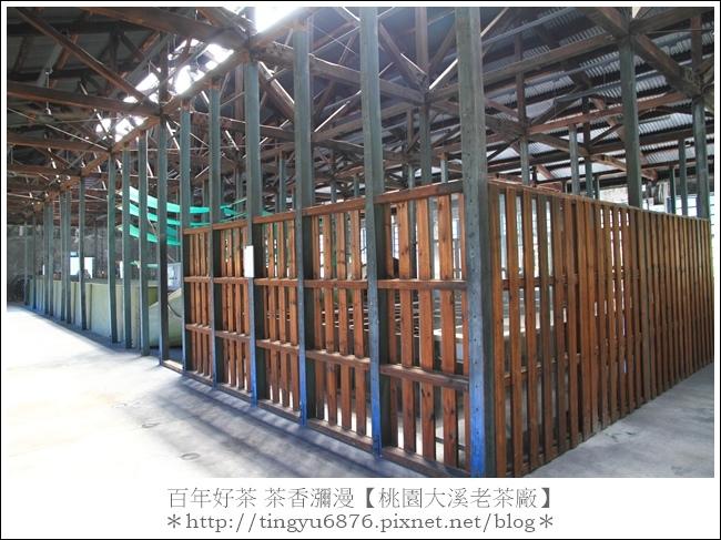 大溪老茶廠98.JPG