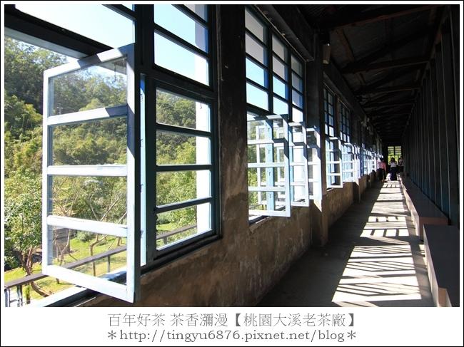 大溪老茶廠103.JPG