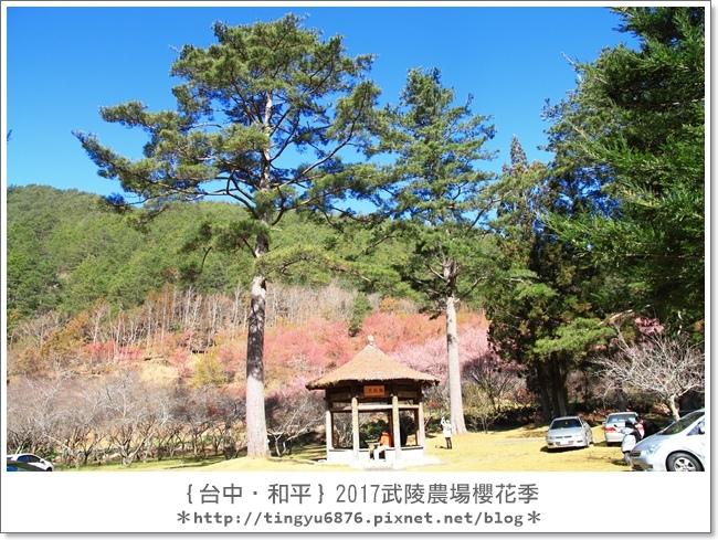 武陵農場28.JPG