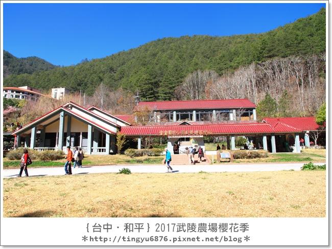 武陵農場106.JPG