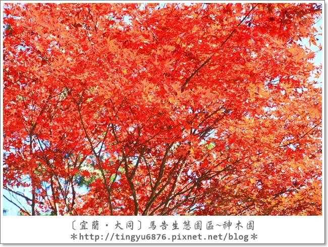 神木園111.JPG