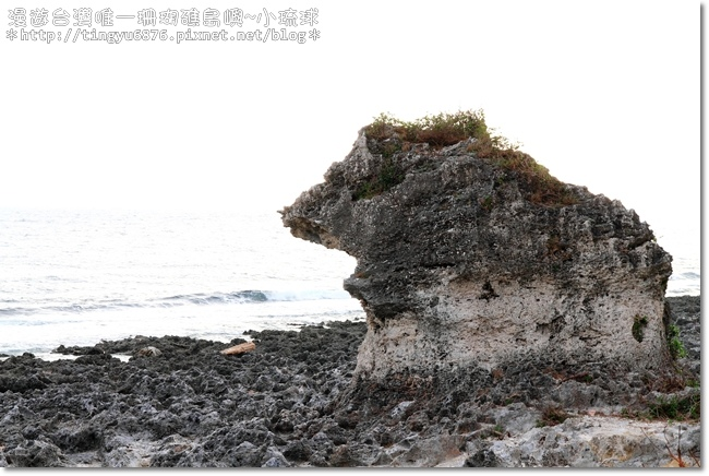 小琉球51.JPG