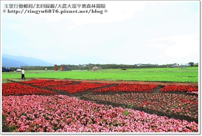 大農大富平地森林園區38.JPG