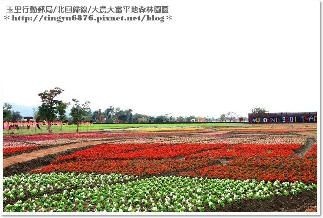 大農大富平地森林園區40.JPG