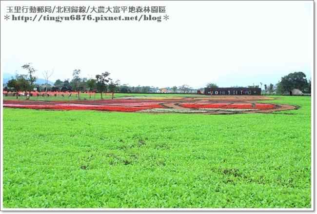 大農大富平地森林園區45.JPG