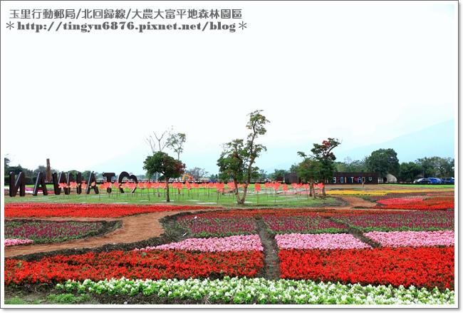 大農大富平地森林園區50.JPG