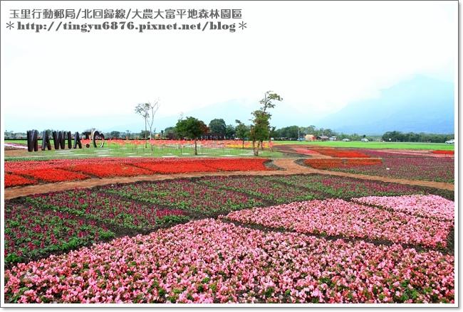 大農大富平地森林園區56.JPG