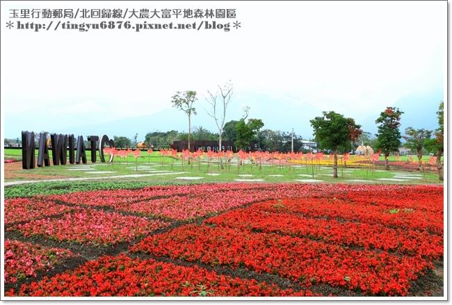 大農大富平地森林園區63.JPG
