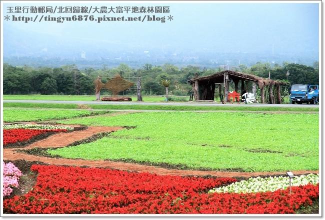 大農大富平地森林園區71.JPG