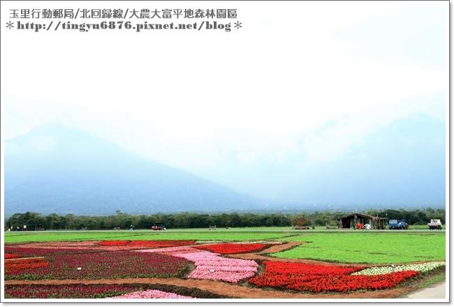 大農大富平地森林園區72.JPG