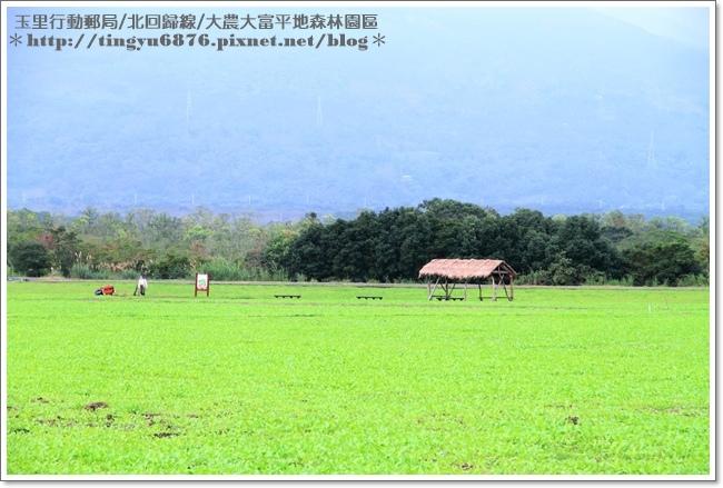 大農大富平地森林園區86.JPG