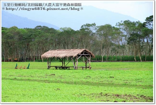 大農大富平地森林園區87.JPG