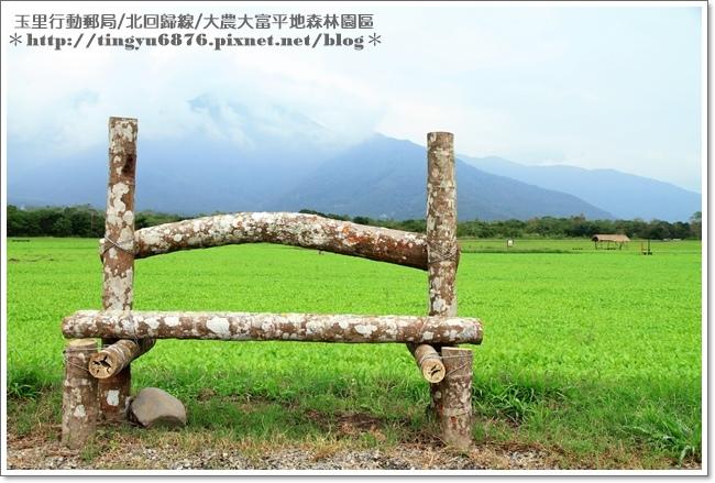 大農大富平地森林園區90.JPG