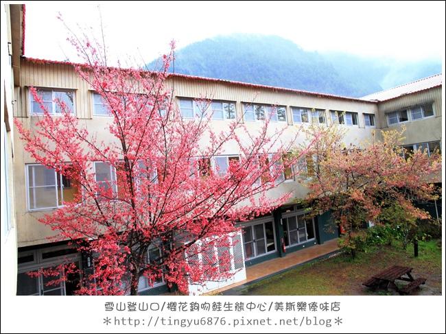 武陵農場320.JPG