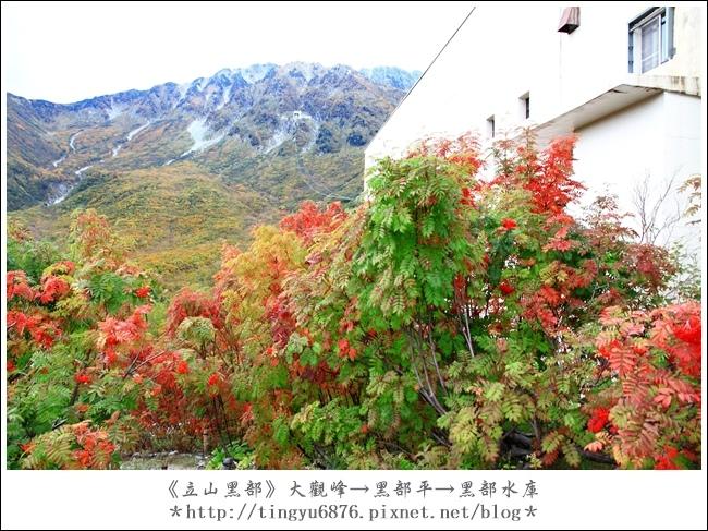 大觀峰-黑部平-黑部水庫51.JPG