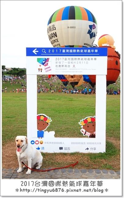 熱氣球嘉年華118.JPG