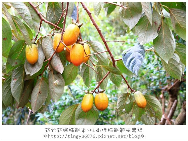 味衛佳柿餅19.JPG