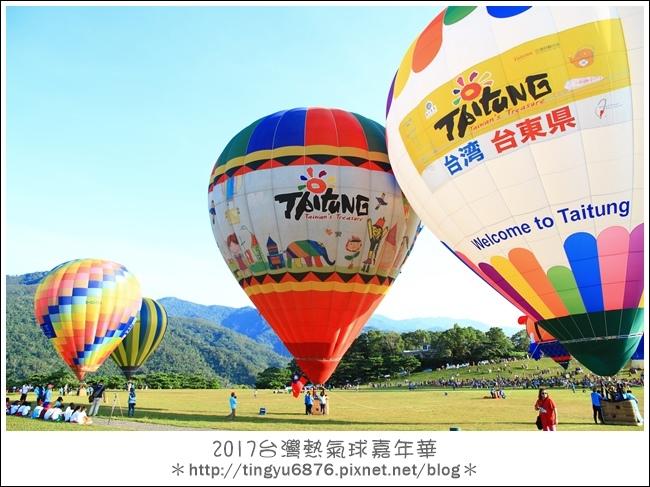 熱氣球嘉年華230.JPG