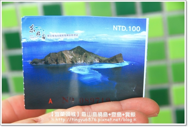 龜山島賞鯨08.JPG