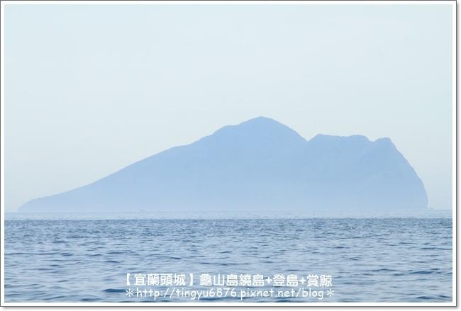 龜山島賞鯨18.JPG