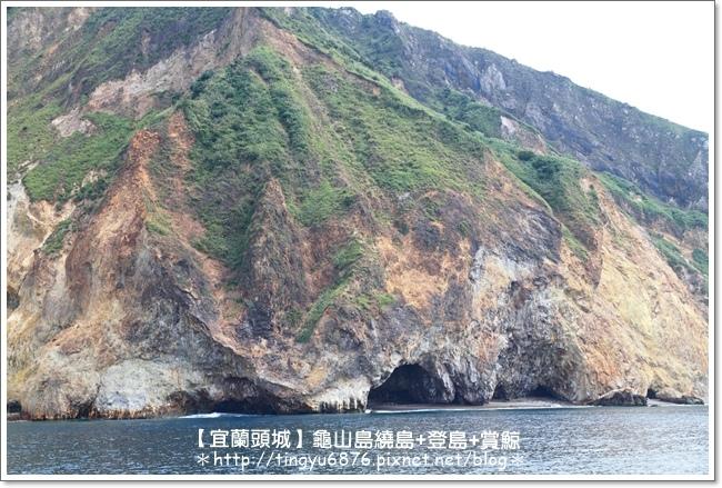 龜山島賞鯨24.JPG