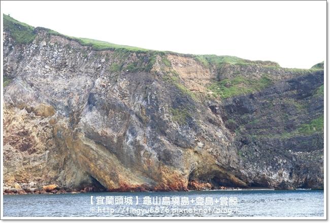 龜山島賞鯨25.JPG