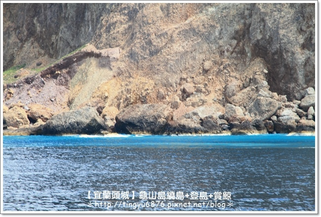 龜山島賞鯨26.JPG