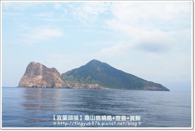 龜山島賞鯨64.JPG
