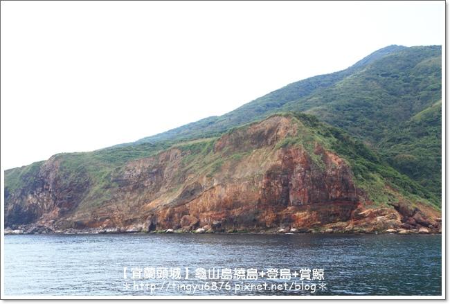 龜山島賞鯨65.JPG