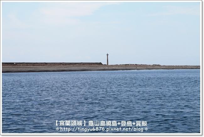 龜山島賞鯨66.JPG