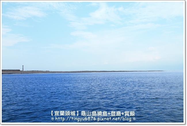 龜山島賞鯨67.JPG
