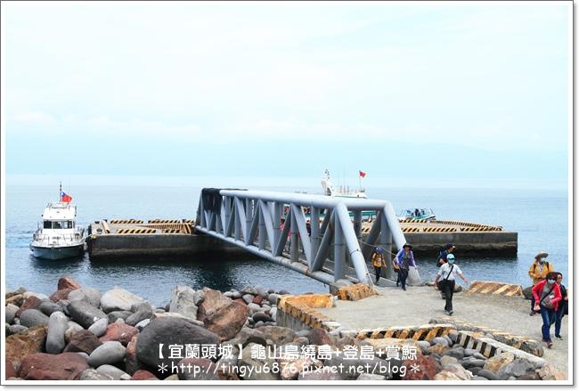 龜山島賞鯨68.JPG