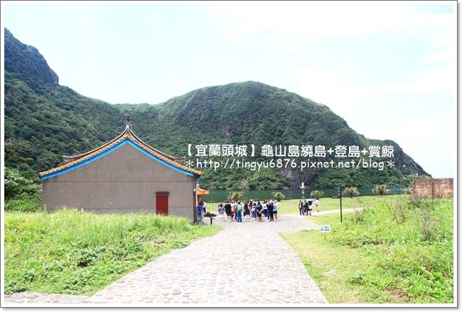 龜山島賞鯨69.JPG