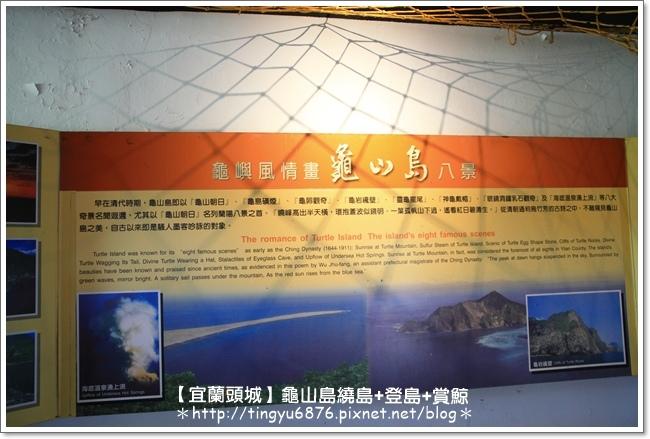 龜山島賞鯨72.JPG