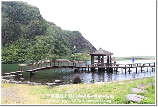 龜山島賞鯨74.JPG