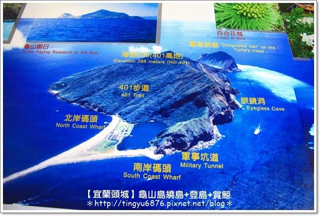 龜山島賞鯨76.JPG