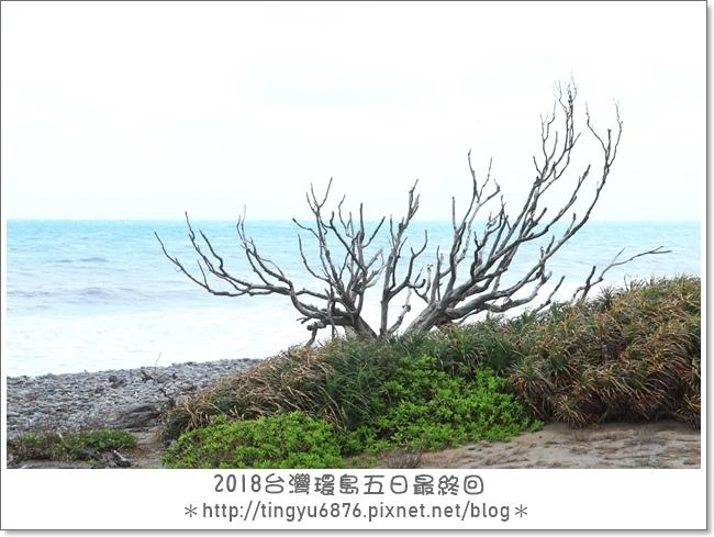 環島Day440.JPG