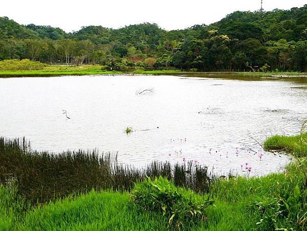東源湖+旭海12.JPG