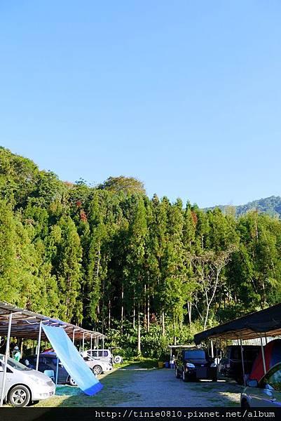 香杉露營2.JPG