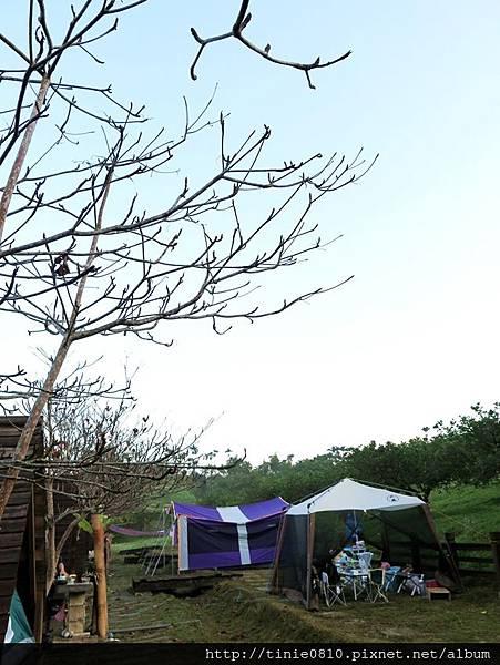 花蓮東豐露營3.JPG