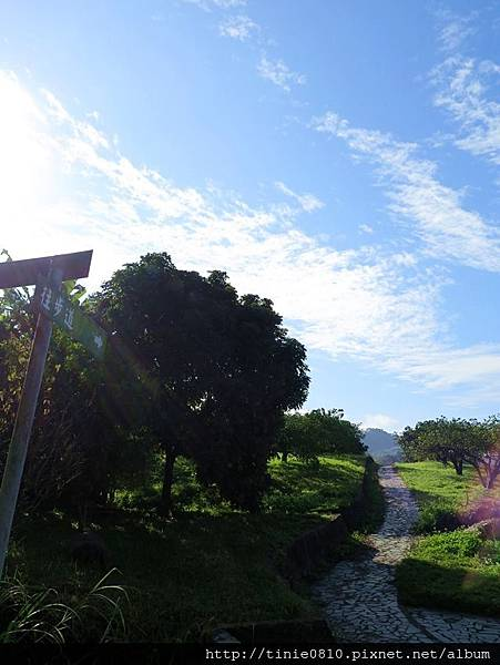 花蓮東豐露營23.JPG