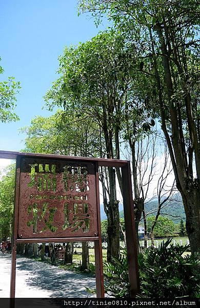 花蓮瑞穗吉蒸牧場4.JPG