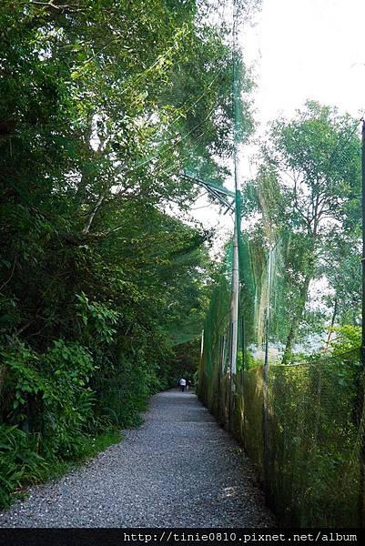林美石盤步道1.JPG