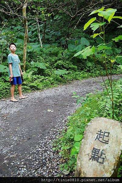 林美石盤步道13.JPG
