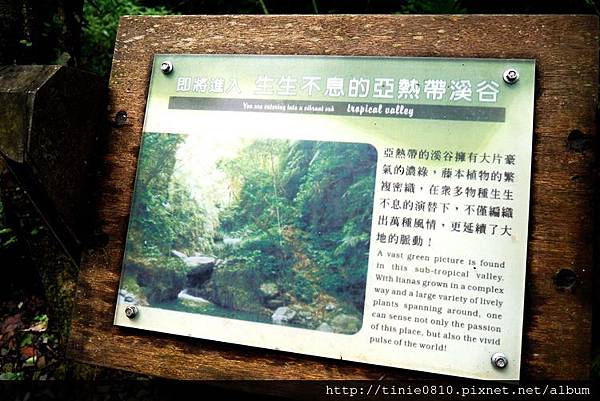林美石盤步道16.JPG